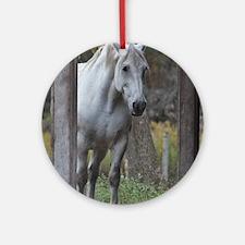 Cute White horse Round Ornament