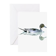 Cute Duck Greeting Cards (Pk of 20)