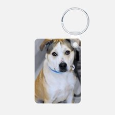 Pitbull/Bulldog Mix Photo Keychains