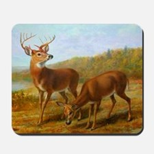 Deer by Lake Mousepad