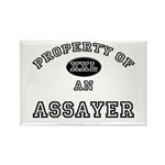 Property of an Assayer Rectangle Magnet (10 pack)