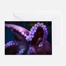 Unique Aquarium Greeting Card