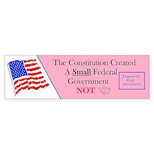 Constitution Small Government Bumper Bumper Sticker
