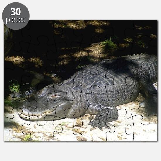 Alligator Sunbathing Puzzle