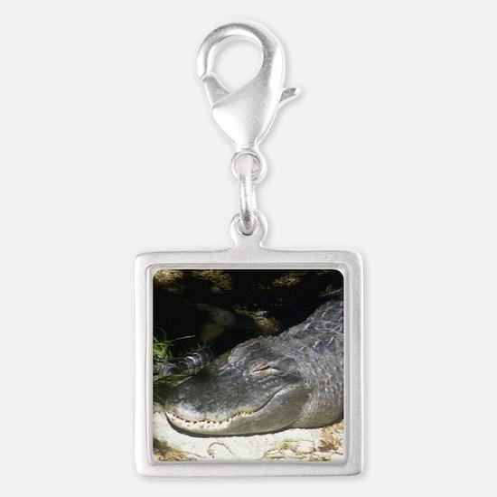 Alligator Sunbathing Charms
