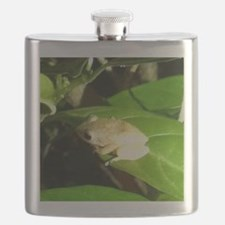 Coqui Flask