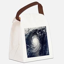 HURRICANE IRENE Canvas Lunch Bag