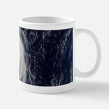HURRICANE IRENE Mug