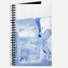ICE CUBES Journal
