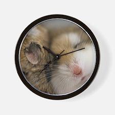 Cute Hamsters Wall Clock