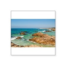 Pacific Coast, Carmel, California Sticker