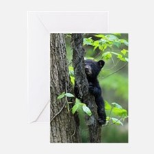 Unique Black Greeting Cards (Pk of 10)