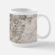 WEATHERED GREY STONE Mug