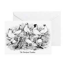 Shortface Tumbler Pigeons Greeting Card