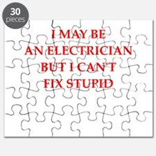 electrician Puzzle