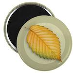 """Elm Leaf 2.25"""" Magnet (100 pack)"""