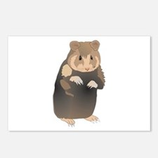 Cute Sitting Hamster Postcards (Package of 8)