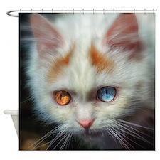 Odd-Eyed Persian Kitten Shower Curtain