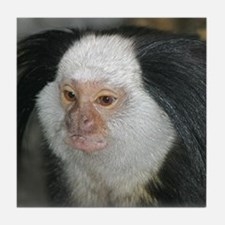 Marmoset Tile Coaster