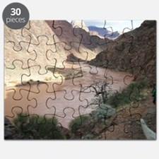 Bright Angel Mule Ride To Phantom Ranch Puzzle
