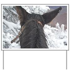 Grand Canyon Mule Ride Yard Sign