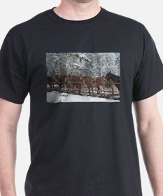 Stables at the Grand Canyon T-Shirt