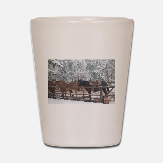 Mule Ride at the Grand Canyon Shot Glass