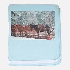 Mule Ride at the Grand Canyon baby blanket