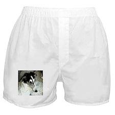 Shayna, Greyscale Boxer Shorts
