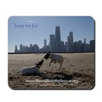 English Pointer Pups Chicago Mousepad