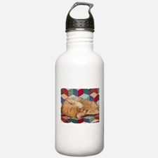 Cat Napping Water Bottle