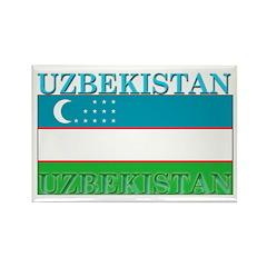 Uzbekistan Uzbek Flag Rectangle Magnet (100 pack)