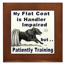 Flat Coat Agility Framed Tile