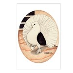 70s Indian Fantail Pigeon Postcards (Package of 8)