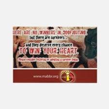 No Winners in Dogfighting Rectangle Magnet (100 pa