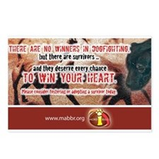 No Winners in Dogfighting Postcards (Package of 8)