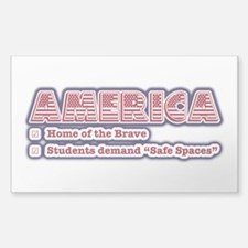 American Safe Spaces Decal
