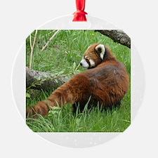 Cool Red panda Ornament