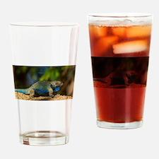 Lizard in the Desert Drinking Glass