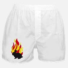 Cool Dwarf rabbit Boxer Shorts