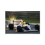 F1 Magnets