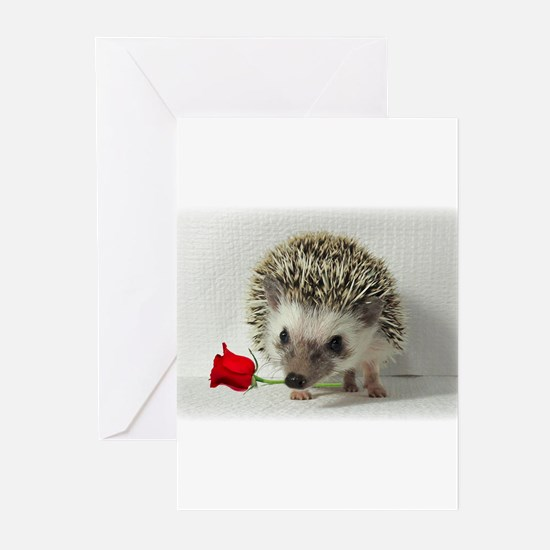 Funny Hedgehog Greeting Cards (Pk of 10)