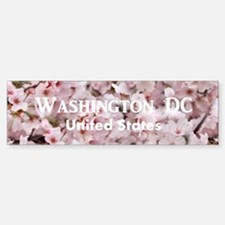 Washington DC Bumper Bumper Sticker