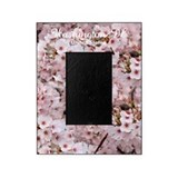 Cherry blossom wash dc frame Picture Frames