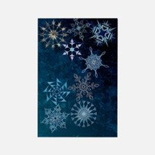 Harvest Moons Snowflakes Magnets