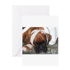 Get well soon boxer dog Greeting Card