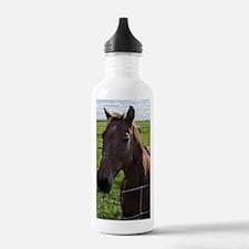 Unique Horse pasture Water Bottle