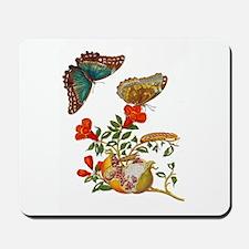 Maria Sibylla Merian - Pomegranate and B Mousepad