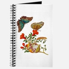 Maria Sibylla Merian - Pomegranate and But Journal
