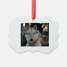 Cute Hmas Ornament